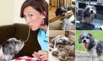 TV star Miranda Hart takes time out to mourn her beloved Peggy