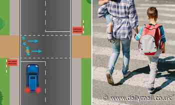 Road Safety Quiz: can the blue car safely move forward through the children's crossing?