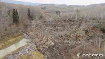 Homeowners near Site C project sue after landslides wiped out property values