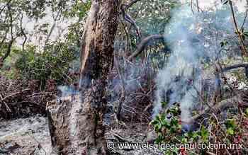 Denuncian quema de mangle en Barra de Potosí - El Sol de Acapulco