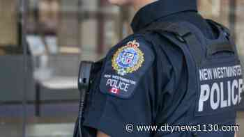Alleged shoplifter threatens security guard with stun baton in New Westminster - News 1130