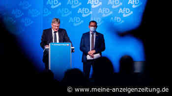 AfD-Paukenschlag: Verfassungsschutz macht wohl gegen ganze Partei ernst - Meuthen droht mit Gegenmaßnahme