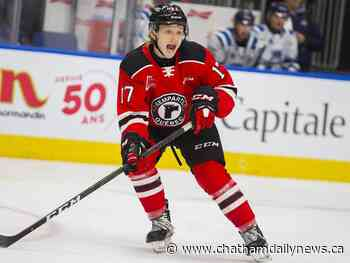 Schives traded to Baie-Comeau in QMJHL - Chatham Daily News