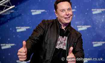 Elon Musk responds to designer over use of SpaceX logo in video game