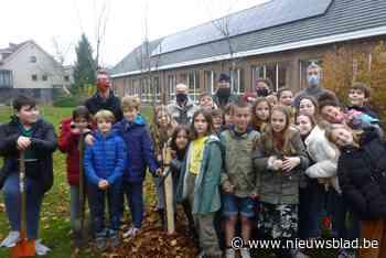 Sint-Filippusschool plukt de vruchten van klimaatactie