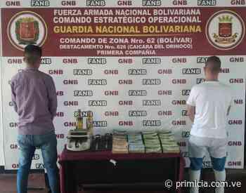 Implicados en la compra ilegal de oro en Caicara del Orinoco - primicia.com.ve