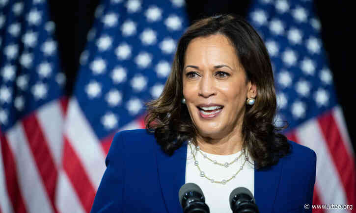 Vice President Kamala Harris: Breaking barriers and making history