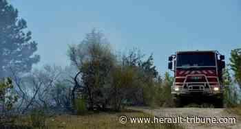 SERIGNAN - Ecobuage : vignerons et sapeurs pompiers autour d'une table en mairie - Hérault-Tribune
