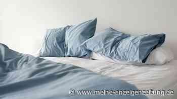 Ungewollte Kuscheleinheit: Wie Sie Bettwanzen aus Ihrem Bett verbannen
