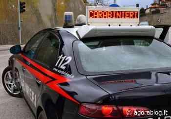 Sannicandro di Bari. Armi e droga occultate nel vano scala. Un 20enne arrestato - Agorà Blog - AgoraBlog