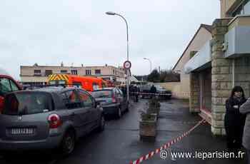 Roissy-en-Brie : le conducteur du 4X4 qui a tué le petit Léo condamné - Le Parisien