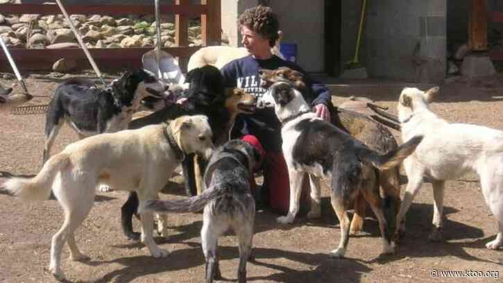Fairbanks woman remembered for moving hundreds of dogs from shelter to sleds