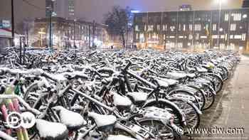 Coronavirus digest: Netherlands introduces curfew to halt spread of new variant - Deutsche Welle
