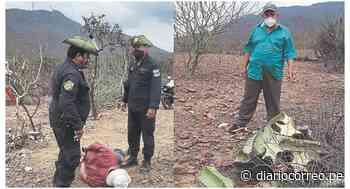Policía forestal constata daños en terrenos de reserva de Chongoyape en Lambayeque - Diario Correo