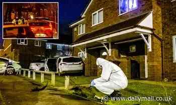 Boy, 15, is shot dead by gang of youths on Birmingham street