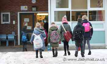 Fears that classrooms will remain closed until after Easter holidays unless Covid-19 cases fall