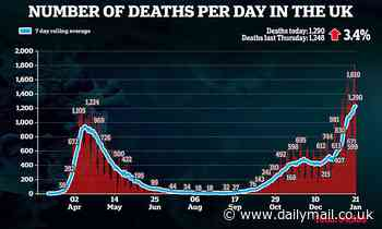 Britain records 1,290 Covid deaths - up just 3.4% in a week