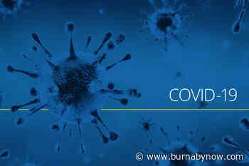 Global stocks sink after China coronavirus resurgence - Burnaby Now