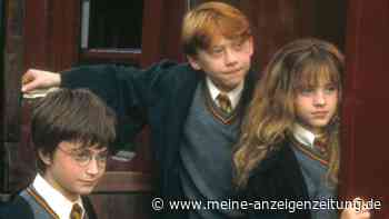 Magisches Geheimversteck: Vater baut seiner Tochter geheimes Harry-Potter-Zimmer