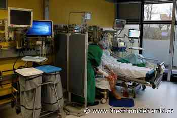No spike seen in Germany's coronavirus intensive care cases due to Christmas, new year - doctor - TheChronicleHerald.ca