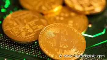 Kryptowährung: Bitcoin fällt unter 30.000 Dollar – Sorgen vor Regulierung und Blasenbildung