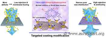 Targeted coating improves graphene oxide membranes for nanofiltration