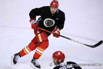 'I know what I need to do': Flames defenceman Nesterov anxious to make most of second NHL stint - TheChronicleHerald.ca