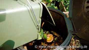 Kompost auf dem Balkon: So wird er richtig angelegt