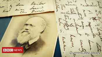 New light shed on Charles Darwin's 'abominable mystery'