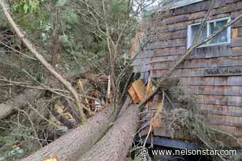 Camp Koolaree's wash house destroyed by January windstorms - Nelson Star