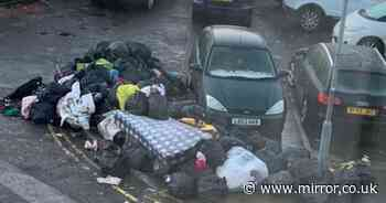 Rats 'chase children' in street where rotting rubbish has piled up for 10 years