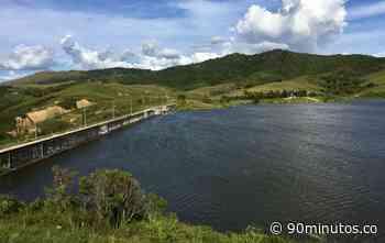 Siguientes : Cvc sembró 15.000 peces en el embalse Guaca, que surte a siete municipios - 90 Minutos