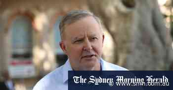 How safe is Anthony Albanese and how long does he have as leader?