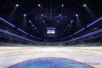 COVID-19: Pandemic may change spectator sports forever as stadiums sit empty