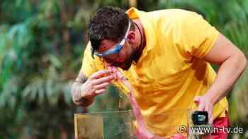 IBES Dschungelshow - Tag 9: Oliver Sanne fühlt sich unverstanden