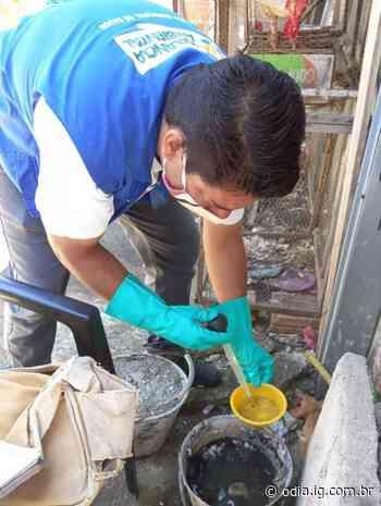 Ações de combate à dengue são intensificadas em Volta Redonda - O Dia