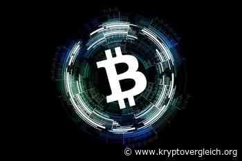 Kim Dotcom will offiziell Bitcoin Cash (BCH)... - Kryptovergleich.org