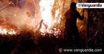 Casi 100 hectáreas quemadas por incendio forestal en Aratoca - Vanguardia