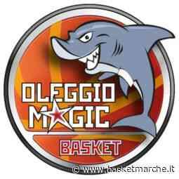 La Magic Basket Oleggio passa nettamente sul campo della Fortitudo Alessandria - Serie B Girone A1 - Basketmarche.it