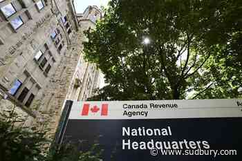 Taxpayers' watchdog sees complaints spike, raising worries about pandemic tax season