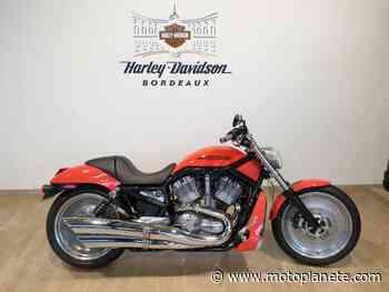 Harley-Davidson V ROD 2004 à 8500€ sur BEGLES - Occasion - Motoplanete