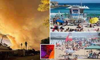 Australia sizzles through a scorching heatwave as thousands flock to the beach
