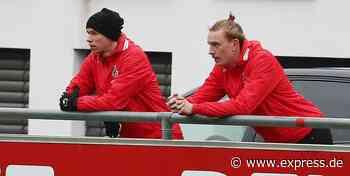 1. FC Köln: So schlugen sich die Neuzugänge in der Hinrunde - EXPRESS