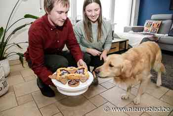 Hondenpatisserie opent in Berendrecht: taartjes voor Blackie en Max