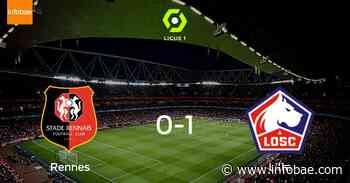 Lille OSC se lleva el triunfo tras derrotar 1-0 a Stade Rennes - infobae