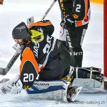 Die Brandis Ladies leben – trotz Meisterschaftsabbruch Eishockey, SWHL-B - Wochen-Zeitung