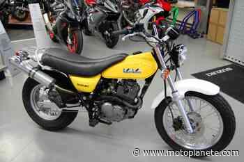Suzuki RV 125 VANVAN 2003 à 2990€ sur COMPIEGNE - Occasion - Motoplanete