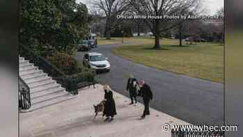 First pets move into the White House