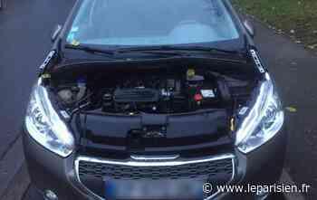 Morsang-sur-Orge : victime de serial voleurs, cette propriétaire est prête à vendre sa Peugeot - Le Parisien