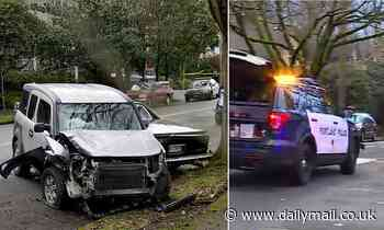 SUV driver kills woman in her 70s and injuries several others in Portland